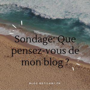 Que pensez vous de mon blog?_blog_betilami