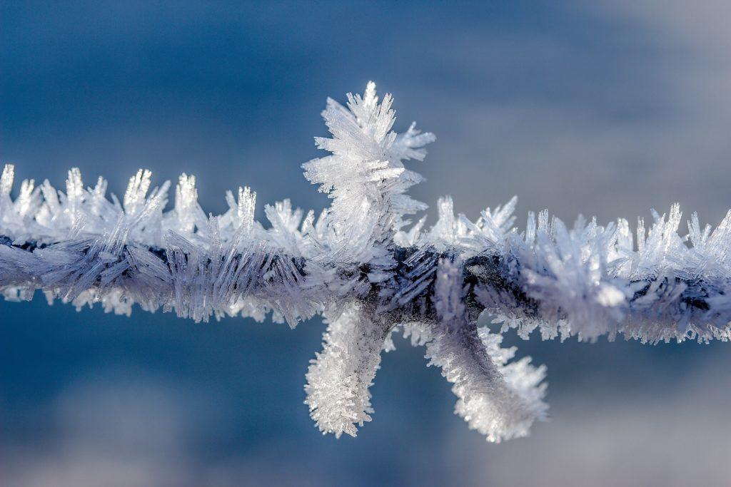 Comment rester naturellement en forme tout l'hiver ?