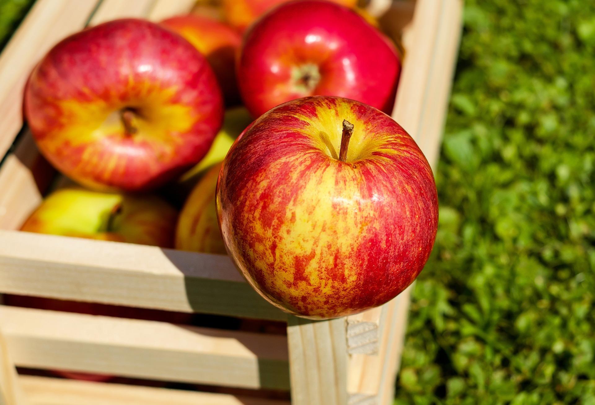 diete pommes pas à pas - blog betilami