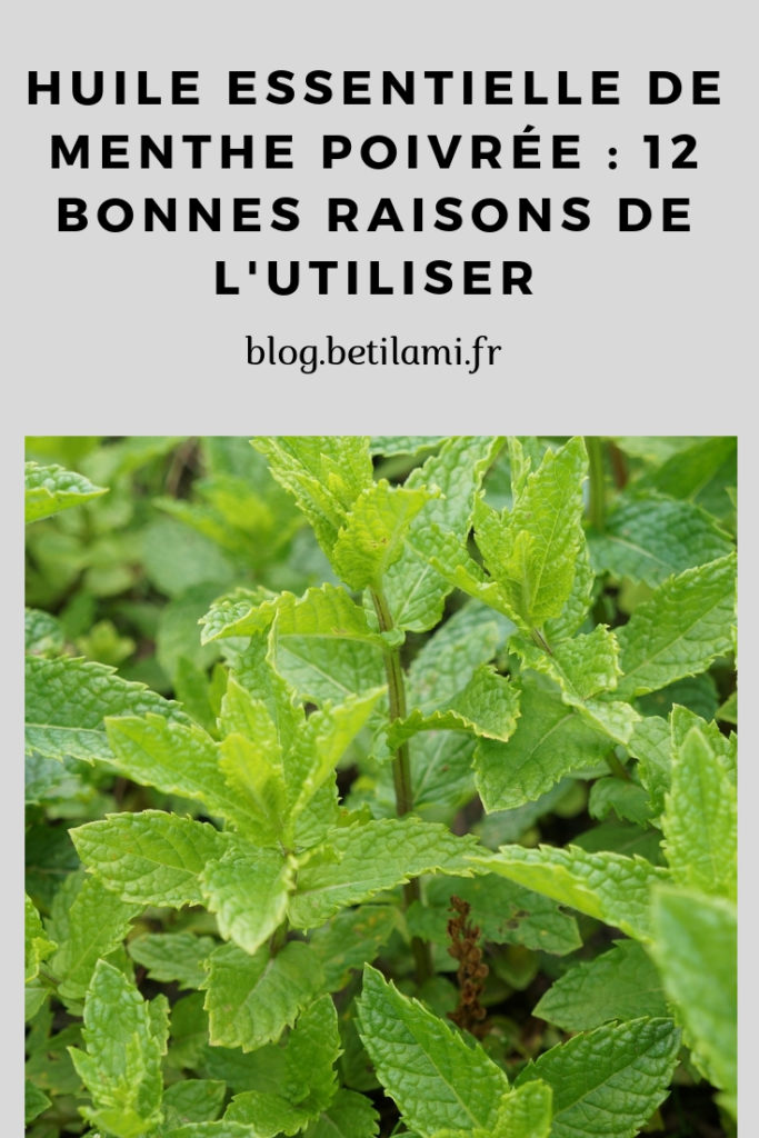 La menthe poivrée, 12 bonnes raisons de l'utiliser