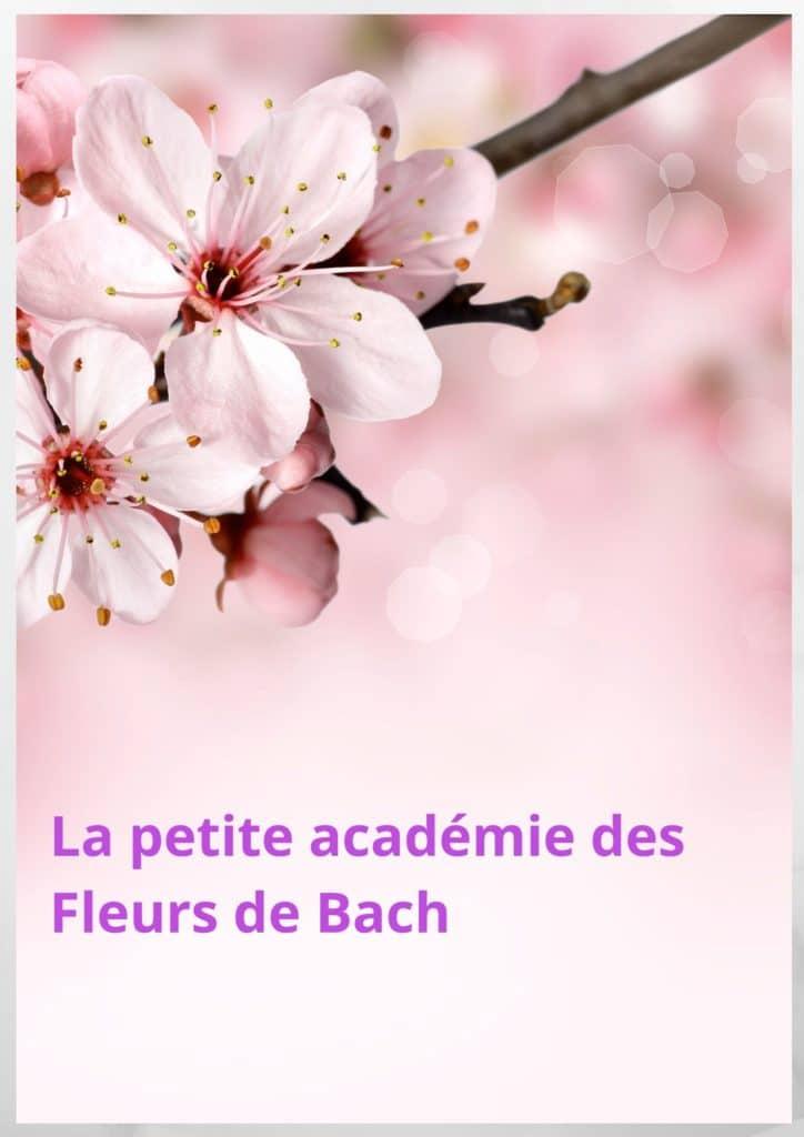 La petite académie des fleurs de Bach